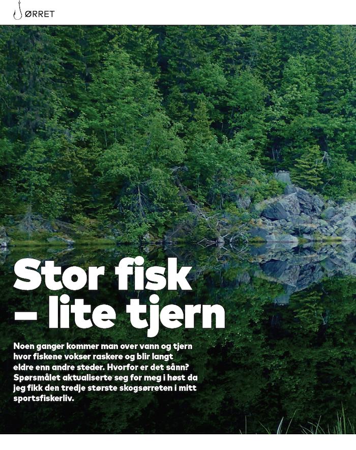 """Fra """"Alt om Fiske"""" nr 10/2015"""